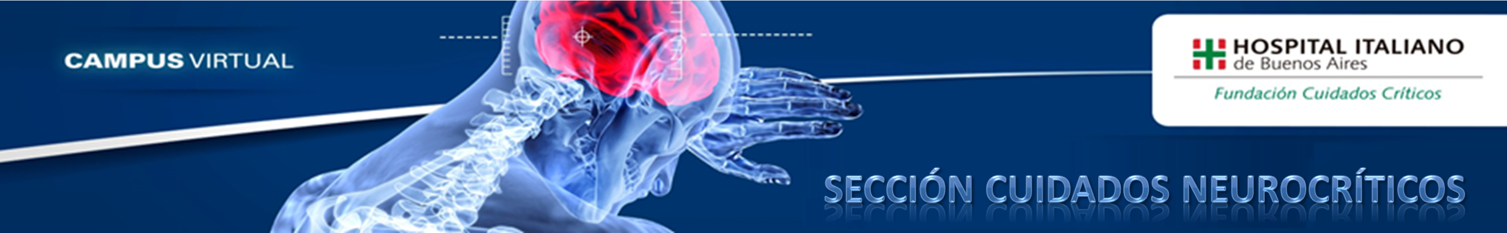 Logo Seccion